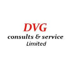 DVG consults & service ltd. -  freelancer Herscheid