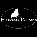 FlorianBrinda - Compositing freelancer Ungheria