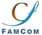FamCom Inc. - WordPress freelancer California