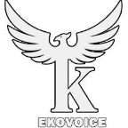 ekovoice - Graphic Design freelancer Tunisi