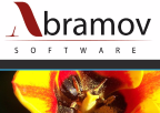 Abramov Software GmbH & Co. KG - C freelancer Amburgo
