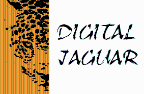 Digital Jaguar - Scienza freelancer Messico